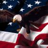 15 проверенных мною мифов об Америке